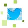CreiserDS - Twitter contact